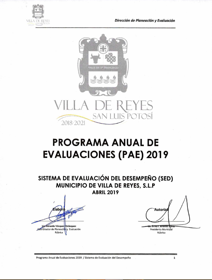 PROGRAMA ANUAL DE EVALUACIONES 2019